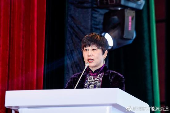 (中国节能协会标准化专委会秘书长 林翎发布氢能团体标准)