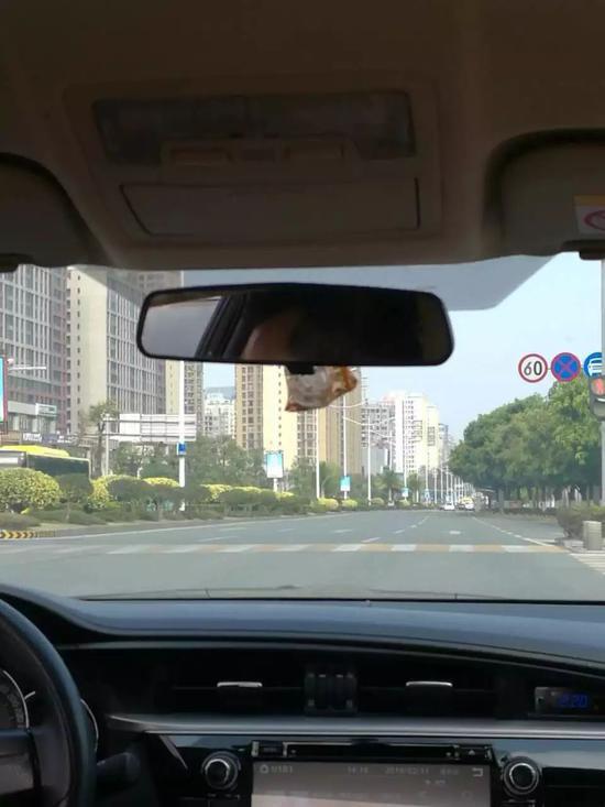 道路交通拥堵指数在下降