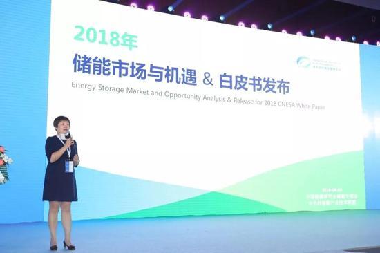 中关村储能产业技术联盟监事长张静发布《储能产业研究白皮书2018》