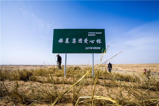 """《""""万株绿色林""""沙漠锁边生态公益项目》"""
