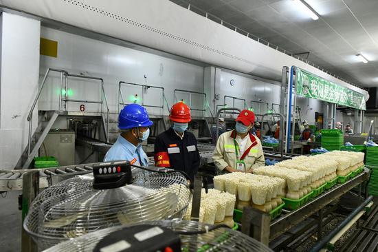 南方电网广东惠州惠城供电组织党员服务队到企业核查生产线的用电情况,为金针菇的增容扩产制定用电方案。温秀云 摄