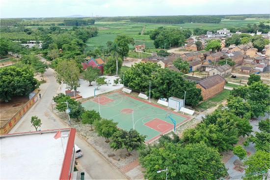 顺德助泰坡村打造36亩辣椒示范基地 精准扶贫显成效