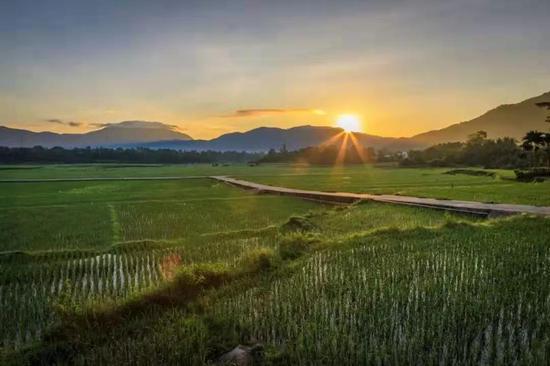 第二批全国乡村旅游重点村名单——文门村