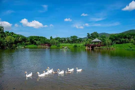 """三亚首个""""美丽乡村""""建设示范点——中廖村"""
