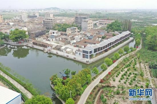 图为金灶镇桥陈村航拍村貌。
