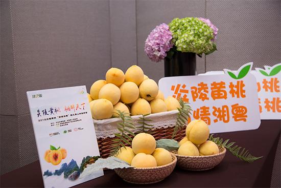 炎陵黄桃到广州