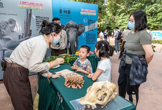 长隆野生动物世界工作人员向观众讲解野生动物保护知识