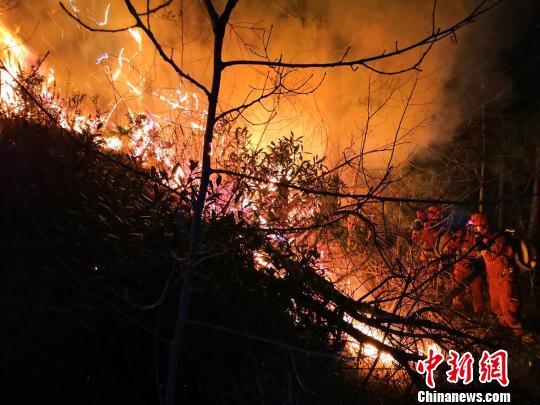 森林消防在火场灭火。