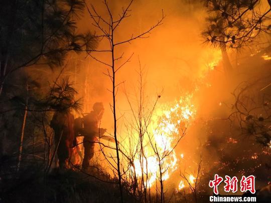森林消防在火场灭火。 本文图片 大理州森林消防支队提供