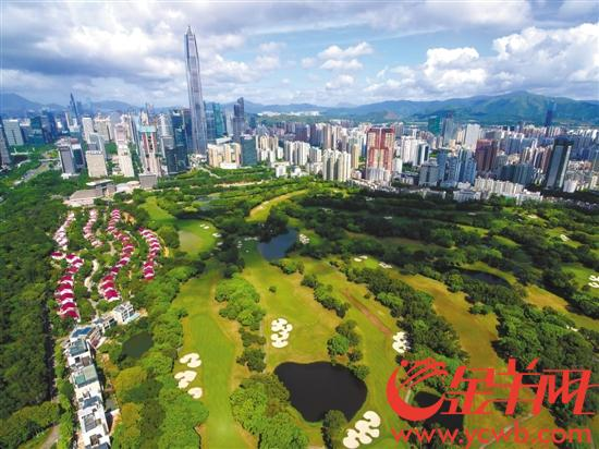 深圳森林覆盖率达40.68%