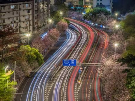 广州竟然私藏了这么多网红马路