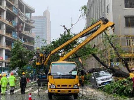 水浸倒树 广州这场雨中好险