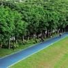广州发布公告:不随意改建具有历史价值的公园