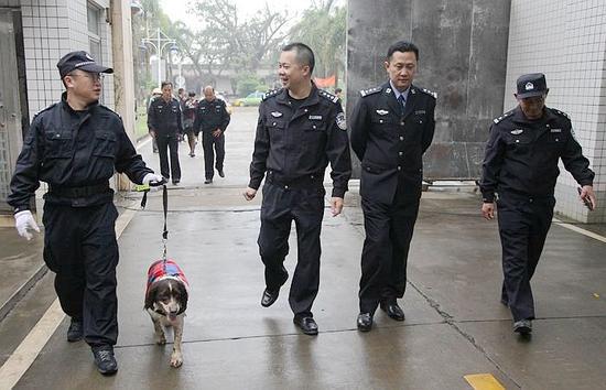 """1月20日,湛江市公安局刑警支队警犬中队民警携缉毒犬""""莉莉""""前往市局强制戒毒所开展毒品排查。"""