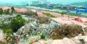 龙塘镇三嘉村山头偷倒的垃圾数量惊人。