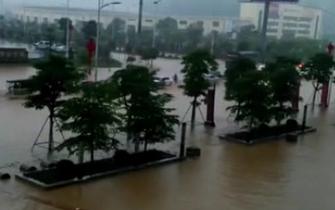 暴雨致廉江多条道路被淹