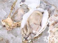 中国无需进口丹麦生蚝 全世界生蚝养殖80%在中国