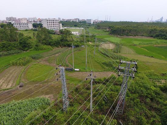 湛江东海供电局首次应用无人机 助力配网线路
