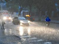粤西12个市县发布台风蓝色或白色预警信号