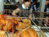 清远34个肉菜市场经营活禽将受罚 罚金最高达5万元