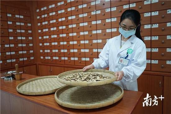惠州6个镇入选省健康镇试点。惠州有很多基层医院已经引入中医疗法。南方日报记者 王昌辉 摄