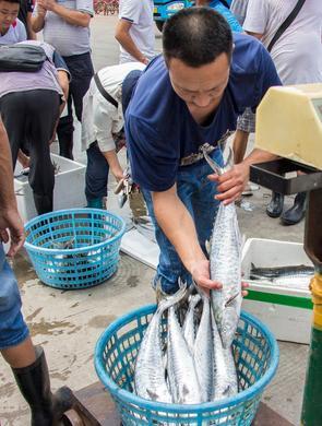 实拍:休渔期后的第一批海鲜来啦