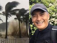 神秘男子台风天街头砍树清路 没想到竟是周润发