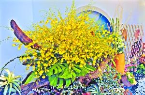 广州国际花卉艺术展越秀公园分会场,花艺比赛中展示的花屋组作品《凝聚》。