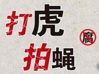 惠州惠阳区人大原副主任黎子平违纪被开除党籍