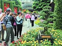 第58届羊城菊会在文化公园开幕 迎来周末人流