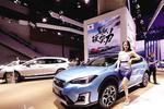 2019广州国际车展开幕