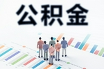 深圳起草公积金管理条例草案