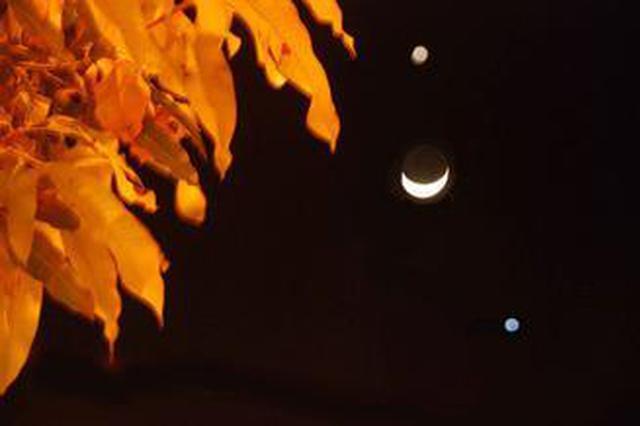 金星伴月今晚上演 各地在日落10分钟后就可看到金星