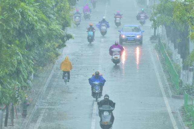 """广州今年开汛时间偏早 """"龙舟水""""期间小心暴雨洪涝"""