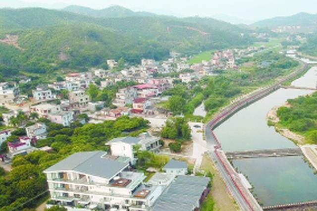 惠东横江村:壮观花海引游人 贫困村变网红村