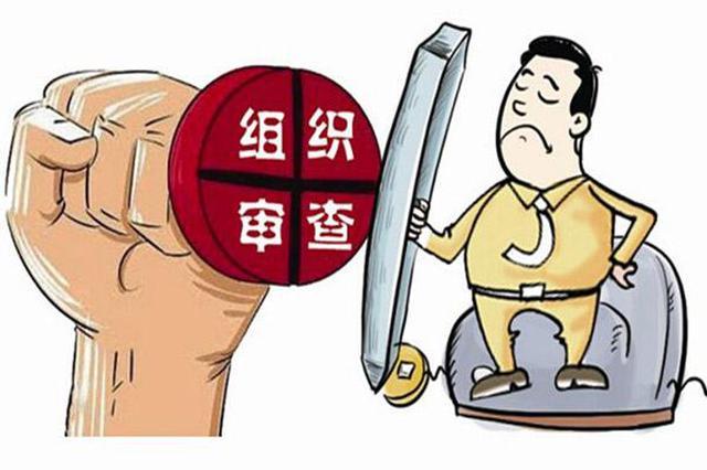 阳江市副市长李孟志涉嫌严重违纪违法 接受纪审调查