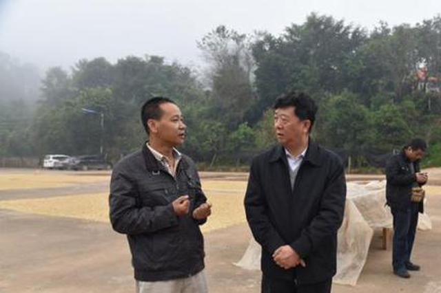 广州精准扶贫云南咖啡产业 孵化咖啡品牌开业