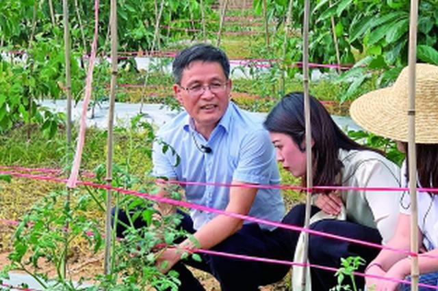 广东百万农民线上免费培训工程 首课吸引近350万人