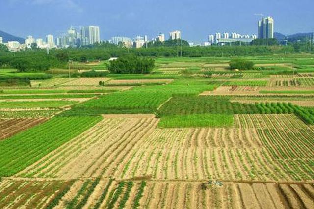 广州出台闲置土地管理办法 闲置满2年政府将无偿收回