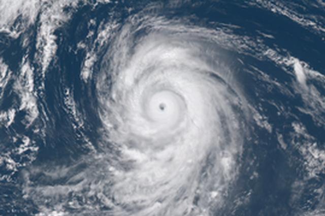"""台风""""狮子山""""昨夜登陆琼海 广东启动防风Ⅳ级应急响应"""