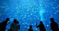 海南打造旅游消费中心