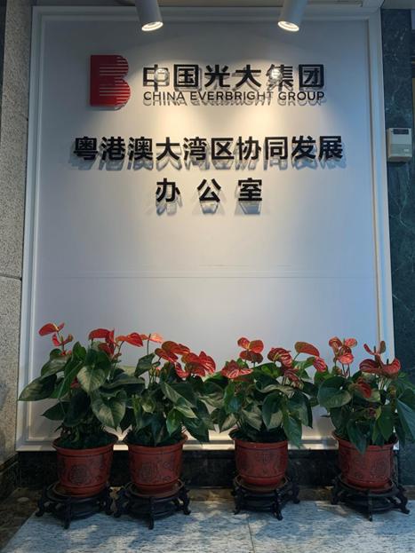 光大集团粤港澳大湾区协同发展办公室