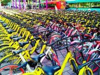 广州市交委:在短期内严禁共享单车新车投放