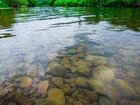 花都、白云河长应付式巡河 被市河长办谈话提醒