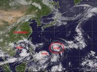 """台风""""山神""""来袭 广东省民政厅启动救灾预警响应"""