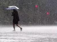 广州天气:出门五分钟流汗两小时 明起将有大雨消暑