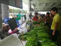 台风过后深圳蔬菜涨价20%