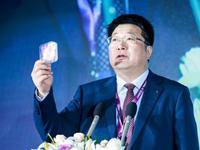 紫光集团董事长:国内90%以上芯片设计公司并不盈利
