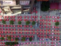 广州又一批全新土豪村即将诞生 272个旧村改造出炉