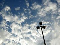 重阳节登高 白天起将转多云